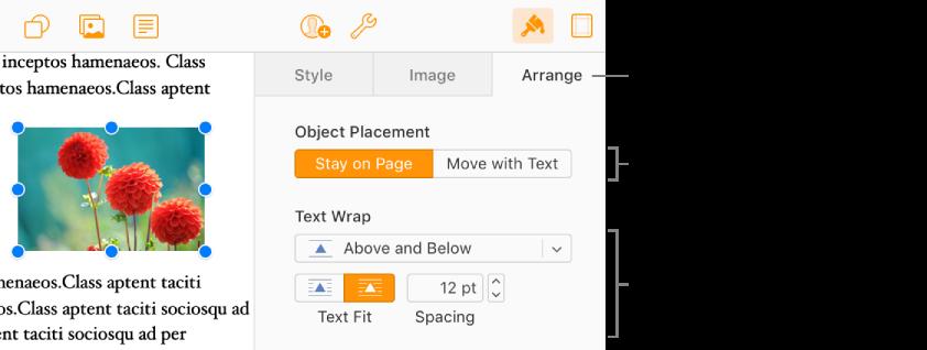 Et bilde er markert i brødteksten. Ordne-panelet i Format-sidepanelet viser at objektet er angitt som Bli på siden, og teksten brytes over og under objektet.