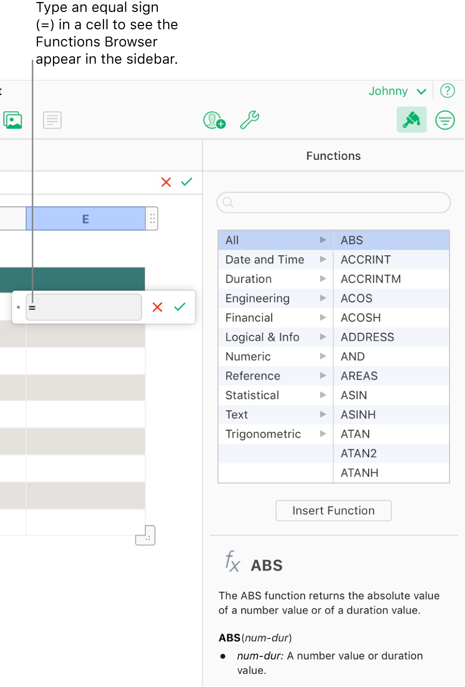 The formula editor appears over a cell with an equal sign in it, and the Functions Browser in the sidebar shows the available functions. A description of the selected function appears below the functions in the sidebar.