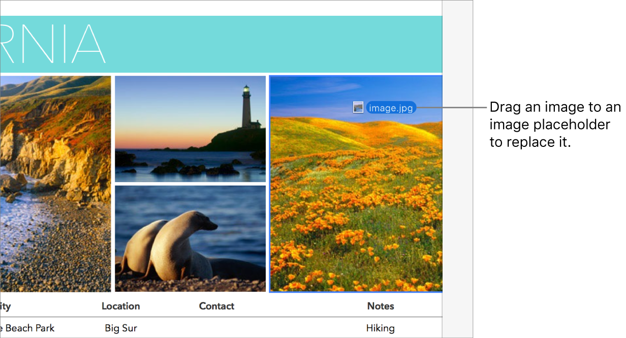 A new image file being dragged to a placeholder image.