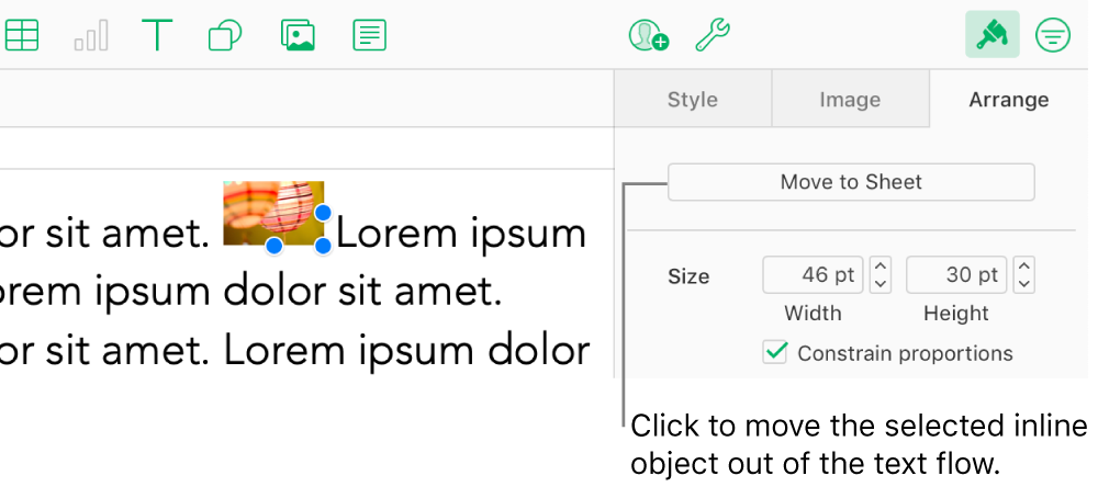 An inline image inside a text box is selected, and a Move to Sheet button is visible in the Arrange tab in the sidebar.