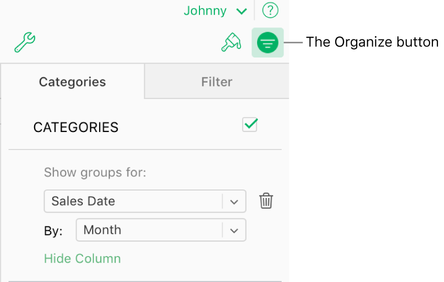 The Organize button is selected in the toolbar, and the rules that describe a category appear in the Categories pane in the sidebar. Data is currently organized by Sales Date, and then grouped by month.