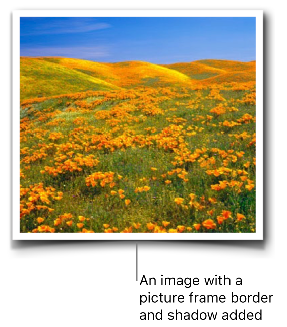 An image with a picture frame border and shadow added.