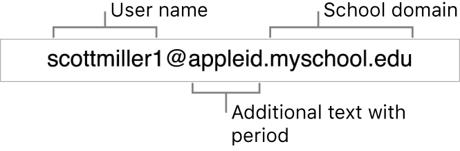 Apple School Manager Managed Apple ID example