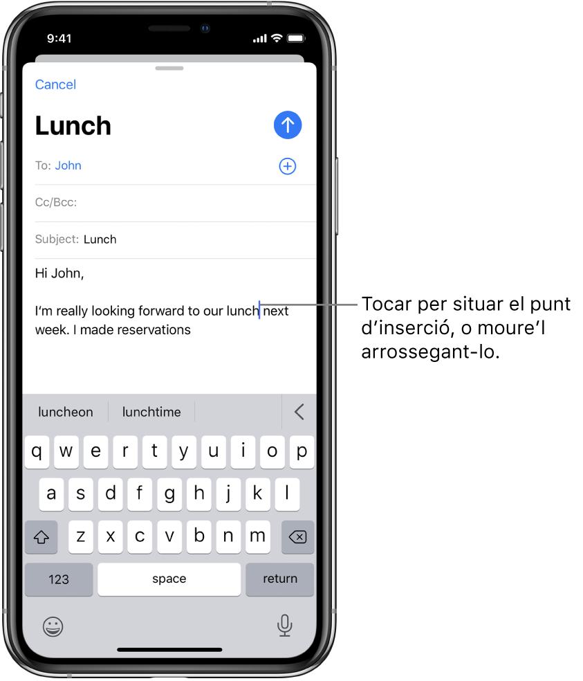 Esborrany d'un correu electrònic amb el punt d'inserció situat on s'inserirà el text.