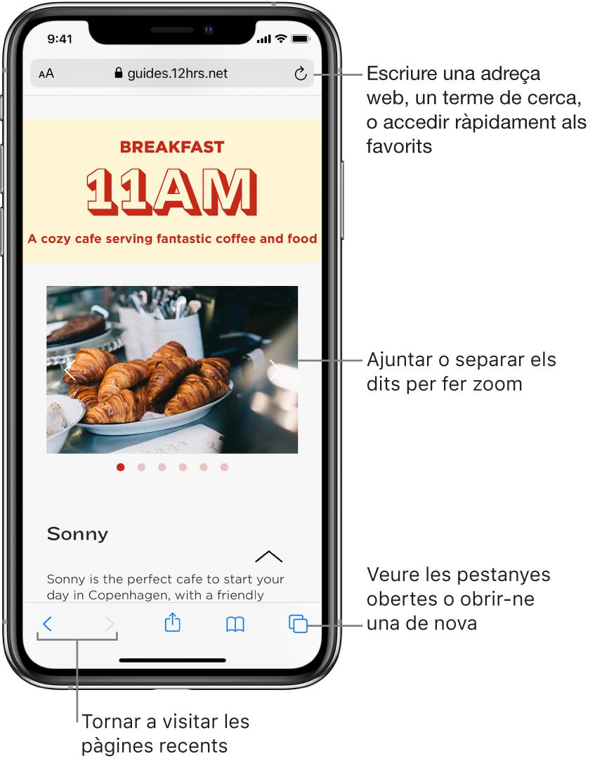 Un lloc web obert en una finestra del Safari, amb el camp d'adreça al capdamunt. A la part inferior, d'esquerra a dreta, hi ha els botons Enrere, Endavant, Compartir, Marcadors i Pàgines.