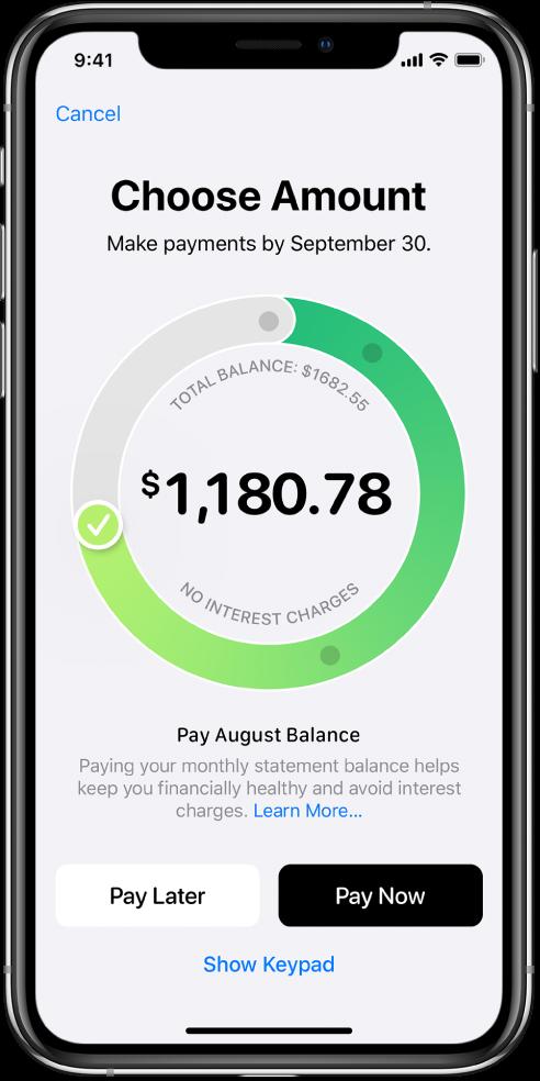 Obrazovka pro zadávání plateb, na níž je vidět kruhový prstenec se značkou zaškrtnutí – jejím přetažením se nastavuje částka platby. Dole na obrazovce jsou volby pro okamžitou platbu apro zadání platby kpozdějšímu datu