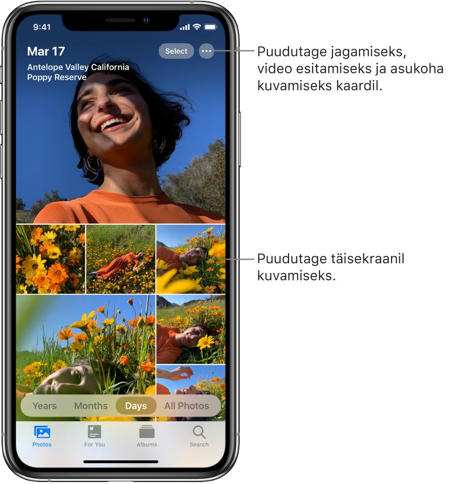 Fotokogu kuvatakse Days-vaates. Valik foto-pisipilte täidab ekraani. Ekraani ülemises vasakus servas on fotode tegemise kuupäev ja asukoht. Üleval paremal on nupud Select ja More Options fotode jagamiseks ja üksikasjade kuvamiseks. Pisipiltide all on valikud fotokogu vaatamiseks valikute Years, Months, Days ja All Photos kaupa. Alaservas on vahekaardid Photos, For You, Albums ja Search.