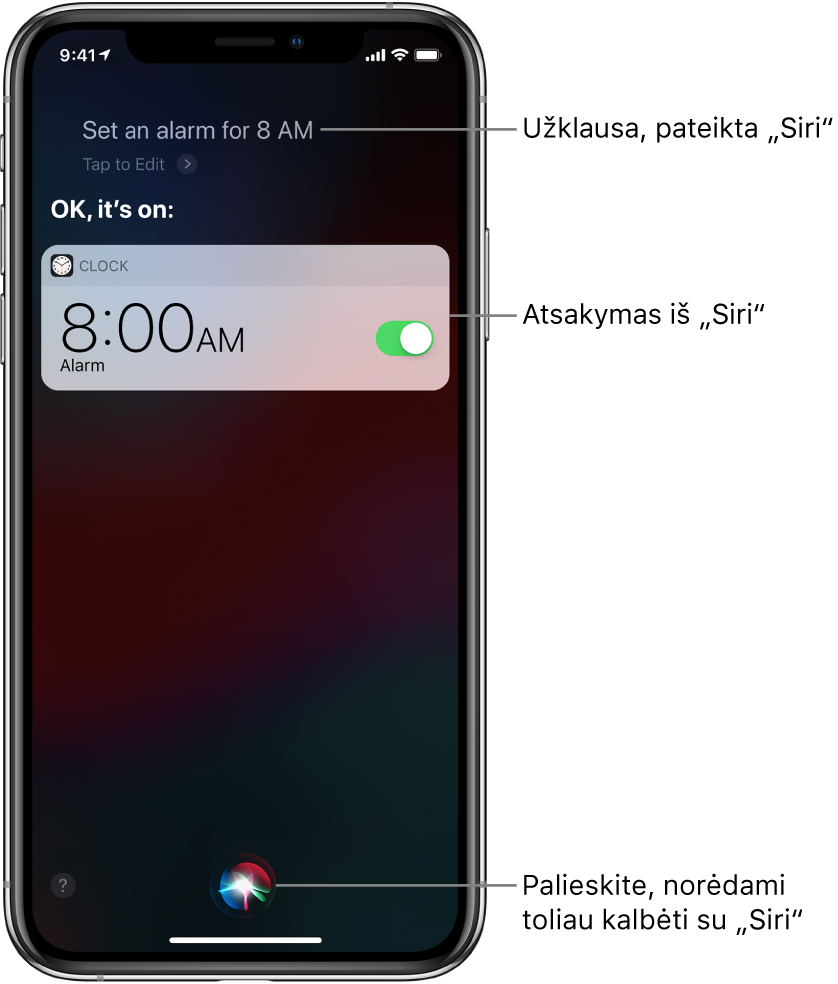 """""""Siri"""" ekrane rodoma, kad """"Siri"""" buvo paprašyta """"Set an alarm for 8 a.m."""" (nustatyk žadintuvą 8 valandai ryto), """"Siri"""" atsakė """"OK, it's on"""" (gerai, nustatyta). Programos """"Clock"""" pranešimas rodo, kad žadintuvas nustatytas skambėti 8val. Mygtukas ekrano centre apačioje naudojamas pokalbiui su """"Siri"""" tęsti."""