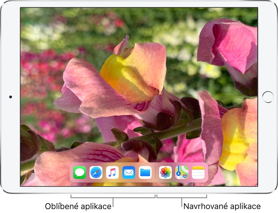 nejoblíbenější aplikace pro seznamování s iphone babička datování vnuka