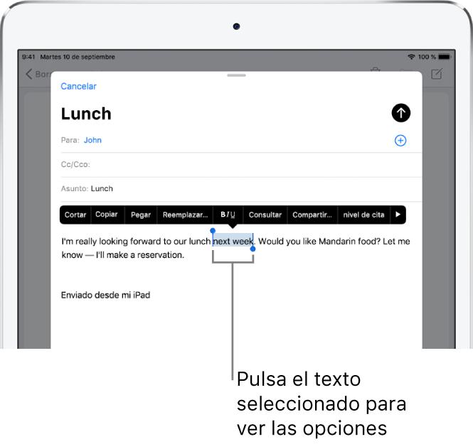 Mensaje de correo electrónico de ejemplo con parte del texto seleccionado. Encima de la selección están los botones Cortar, Copiar, Pegar y Reemplazar. El texto seleccionado aparece resaltado.