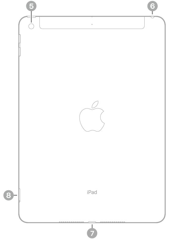 Achterkant van de iPad met bijschriften, van linksboven met de klok mee: camera aan de achterkant, koptelefoonaansluiting, Lightning-connector en simkaarthouder (Wi-Fi+Cellular).