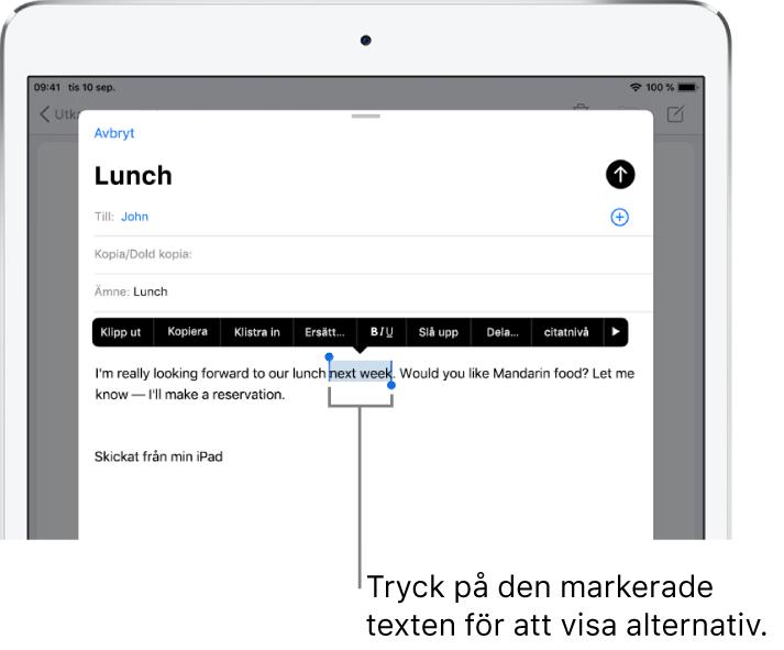 Ett exempel på ett mejl med en del av texten markerad. Ovanför markeringen finns knapparna för att klippa ut, kopiera, klistra in och ersätta. Den valda texten är markerad.