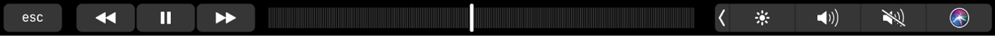 The Music TouchBar with buttons for rewinding, pausing, or fast-forwarding what's playing. There's also a scrubber bar for navigating within a song.