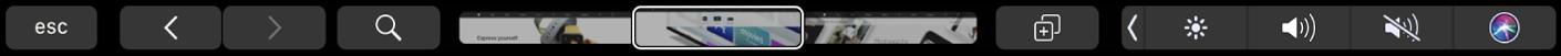 De TouchBar voor Safari met de pijlen voor vooruit en achteruit, de zoekknop, de tabbladnavigatiebalk en de knop voor het toevoegen van bladwijzers.