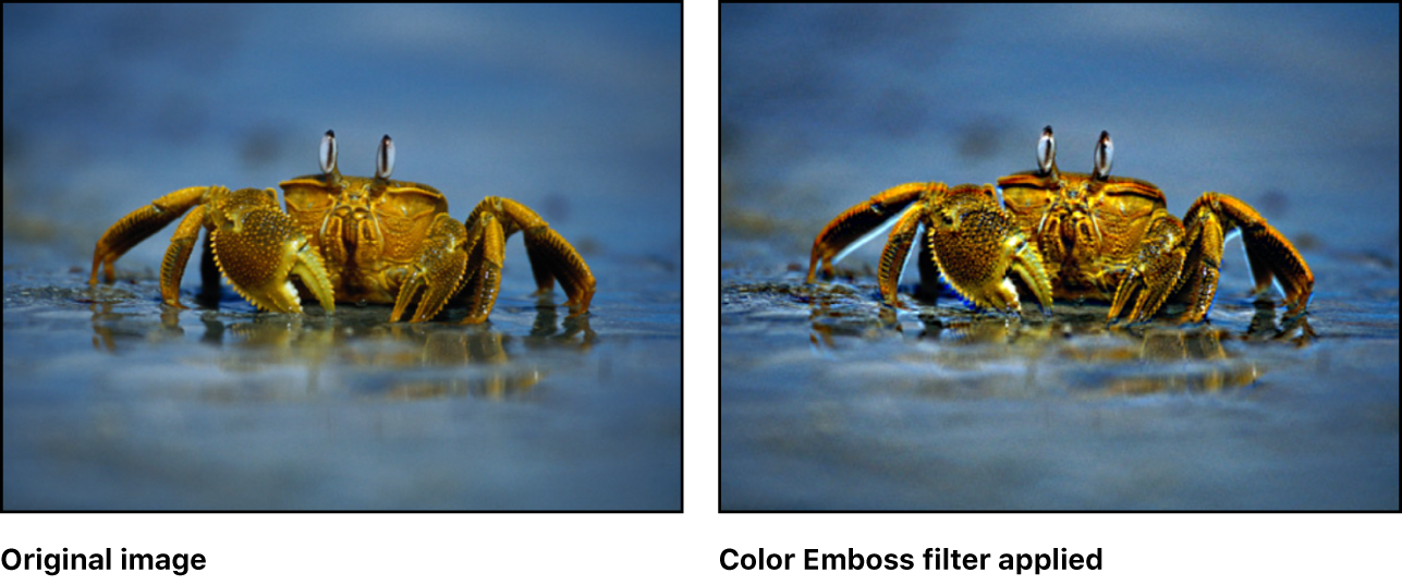 Canvas showing effect of Color Emboss filter