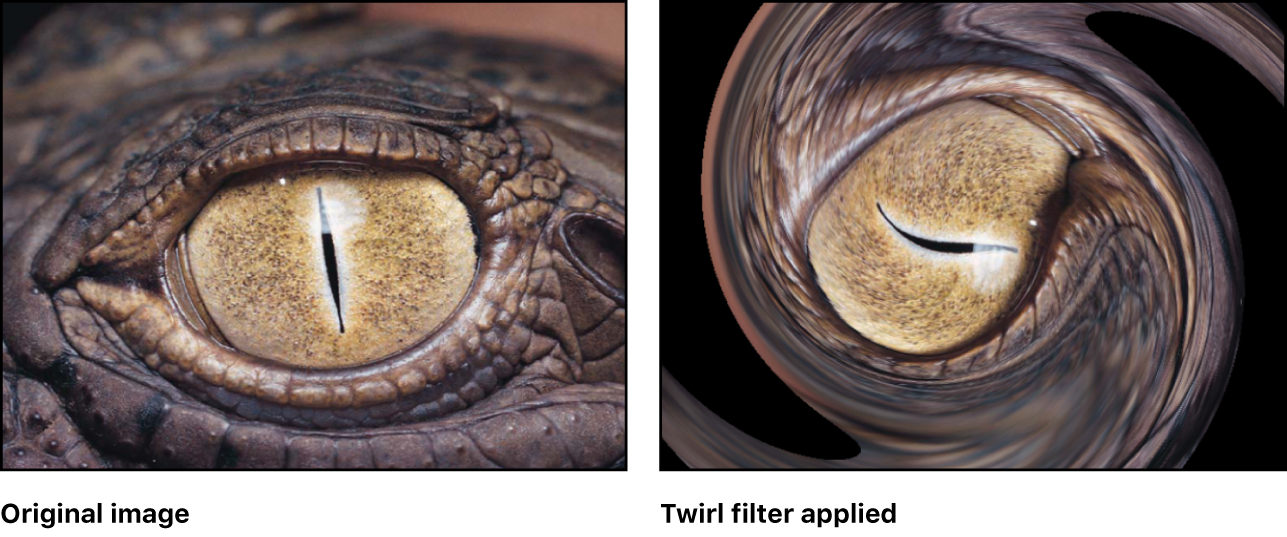 Canvas showing effect of Twirl filter