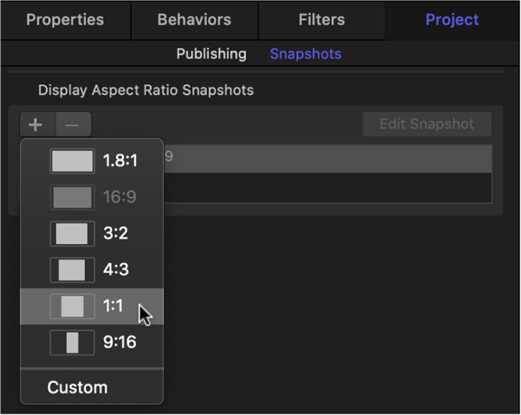 Snapshots pane in Project Inspector showing new display aspect ratio options