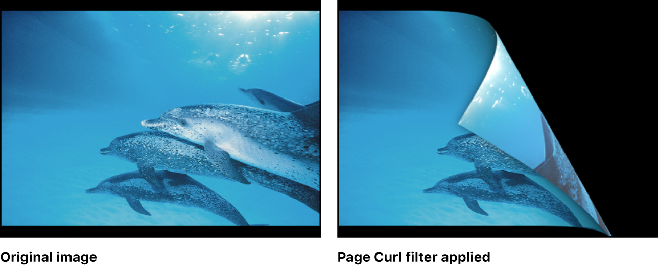 Canvas showing effect of Page Curl filter