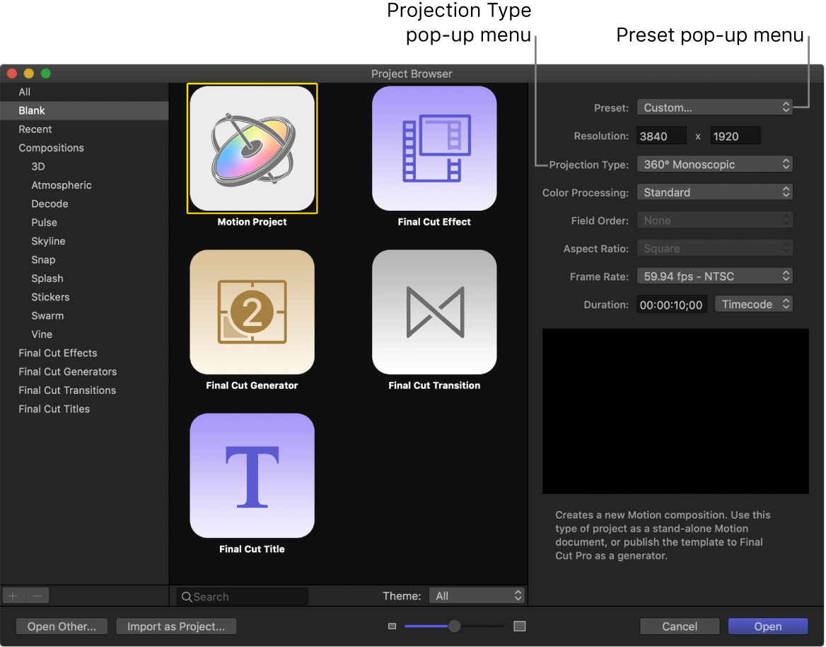 Project Browser showing the Preset pop-up menu and the Projection Type pop-up menu