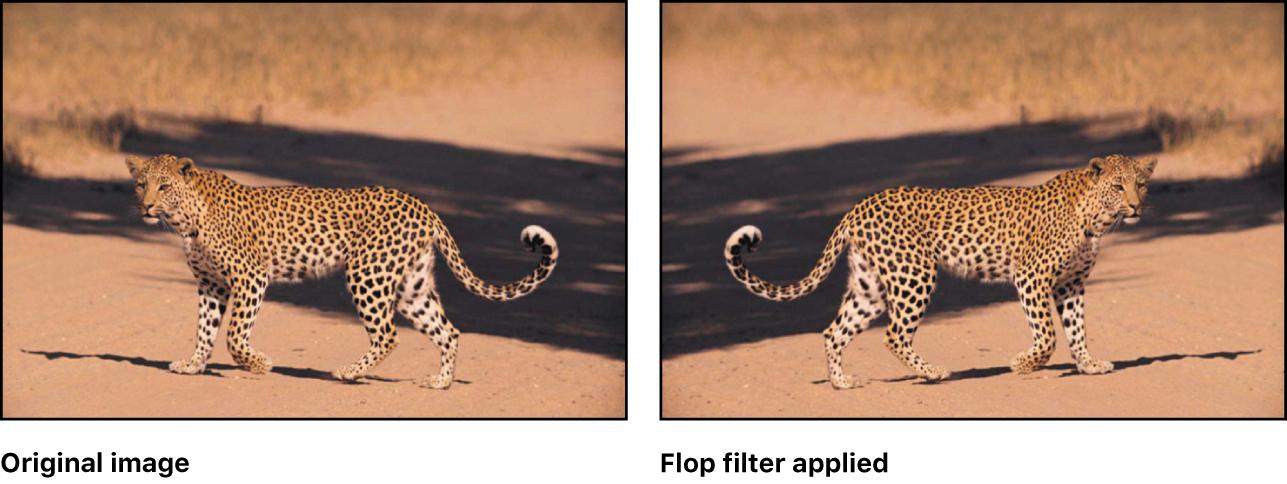 lienzo con efecto del filtro Volteo