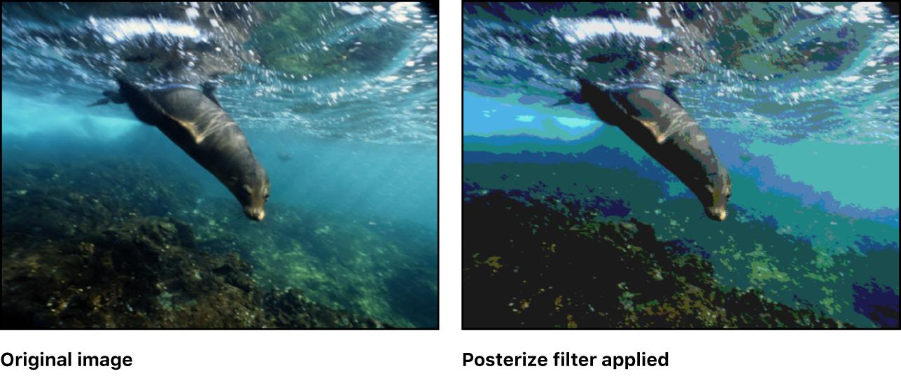 Lienzo con efecto del filtro Posterización