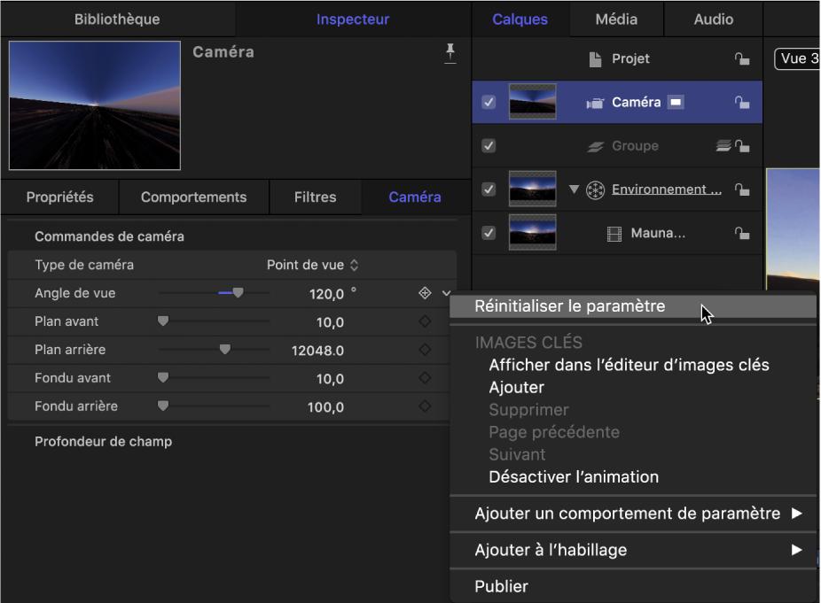 Réinitialisation du paramètre Angle de vue dans l'inspecteur de caméra