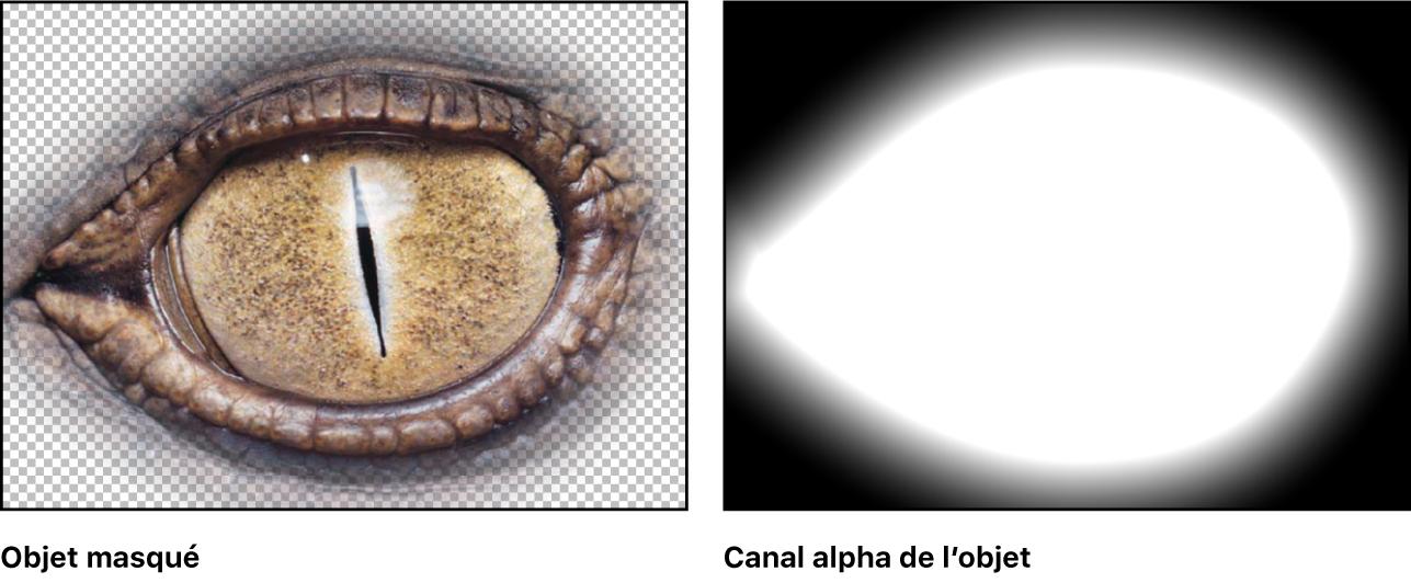Canevas affichant un objet masqué et le canal alpha correspondant
