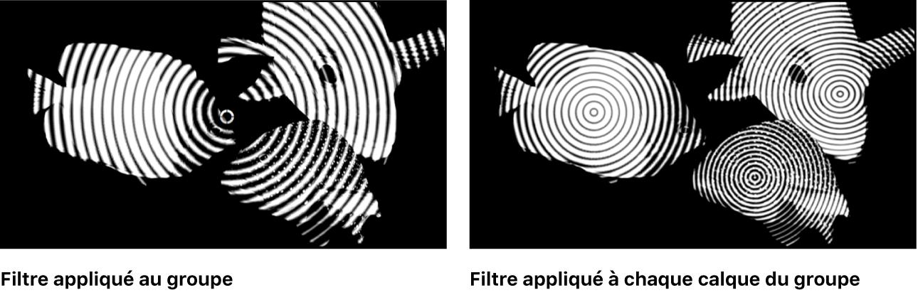 Canevas affichant l'effet relatif d'un filtre appliqué une fois à un groupe ou plusieurs fois à chaque objet du groupe