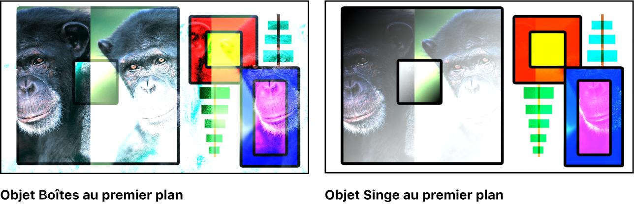 Canevas affichant les boîtes et le singe fusionnés à l'aide du mode Densité couleur–