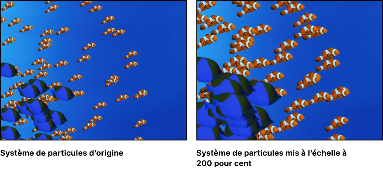 Canevas affichant un système de particules avec deux cellules, chacune mise à l'échelle par rapport à sa taille d'origine