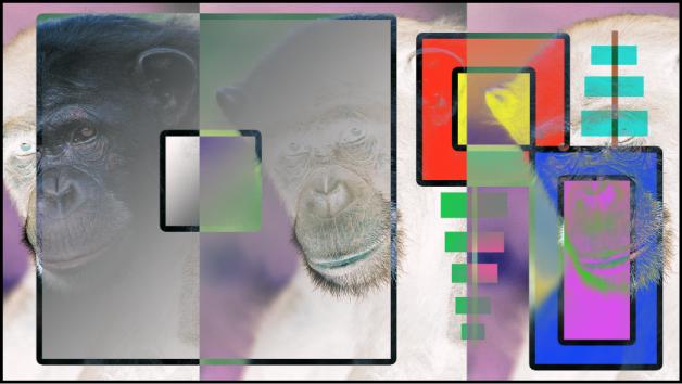 Canevas affichant les boîtes et le singe fusionnés à l'aide du mode Exclusion