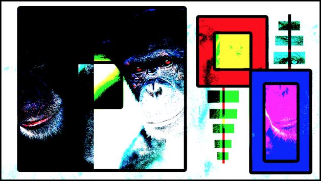 Canevas affichant les boîtes et le singe fusionnés à l'aide du mode Mélange cru
