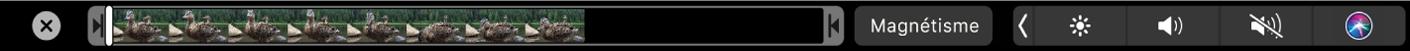 Options de navigation dans la Touch Bar