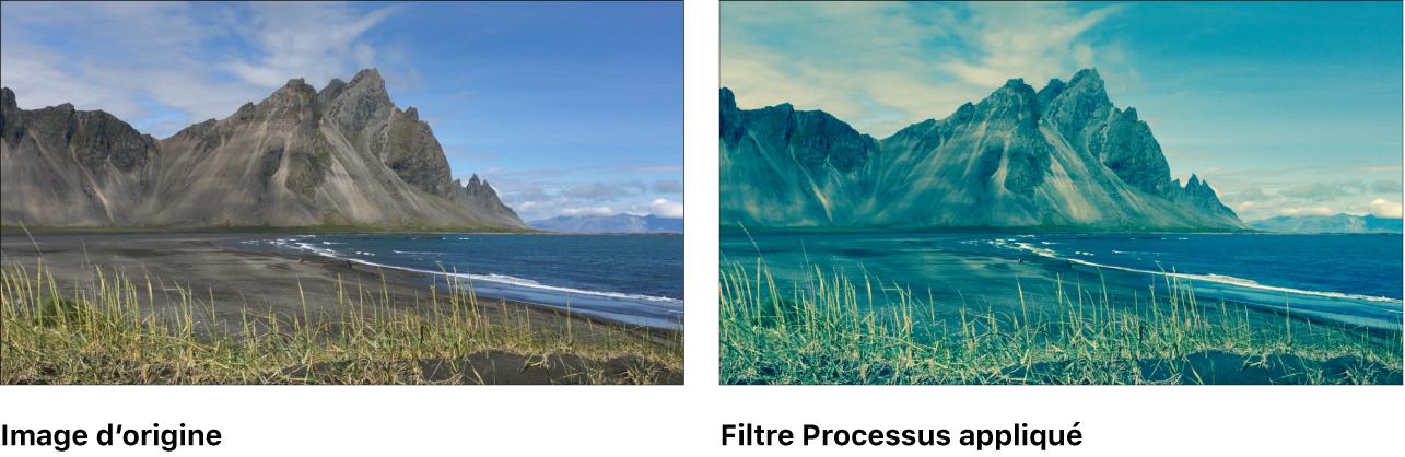 Canevas affichant l'effet du filtre Traitement