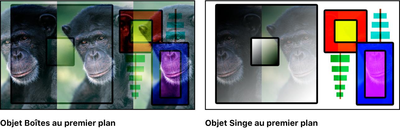 Canevas affichant les boîtes et le singe fusionnés à l'aide du mode Lumière tamisée