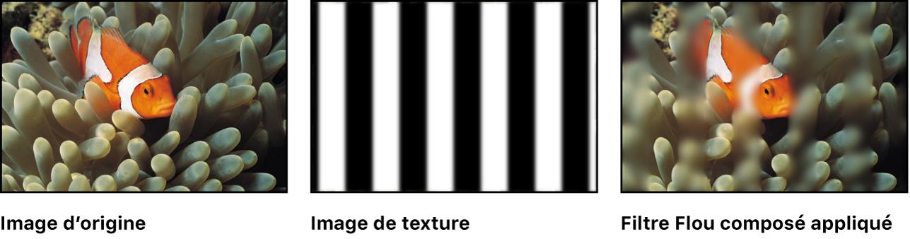 Canevas affichant l'effet du filtre Flou composé