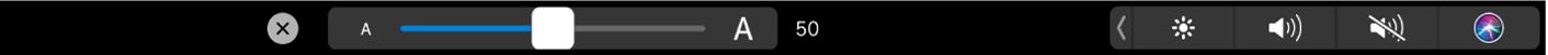 Options de taille de texte dans la TouchBar