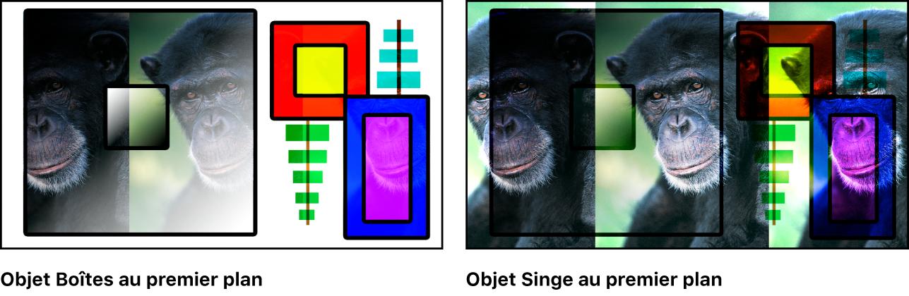 Canevas affichant les boîtes et le singe fusionnés à l'aide du mode Lumière crue