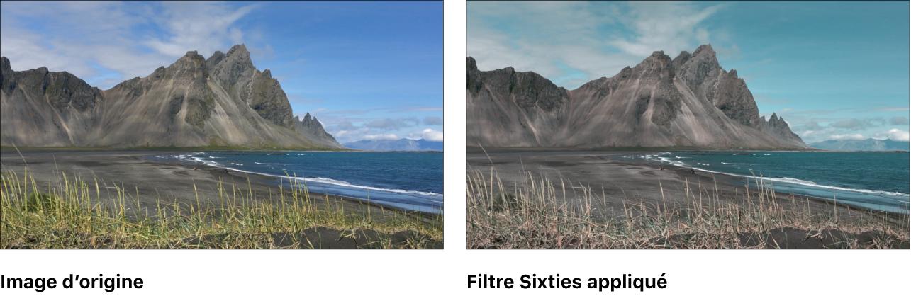 Canevas affichant l'effet du filtre Sixties