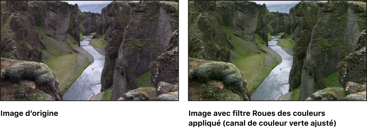 Canevas affichant l'effet du filtre Courbes de couleur (avec le canal du vert des tons intermédiaires ajusté)