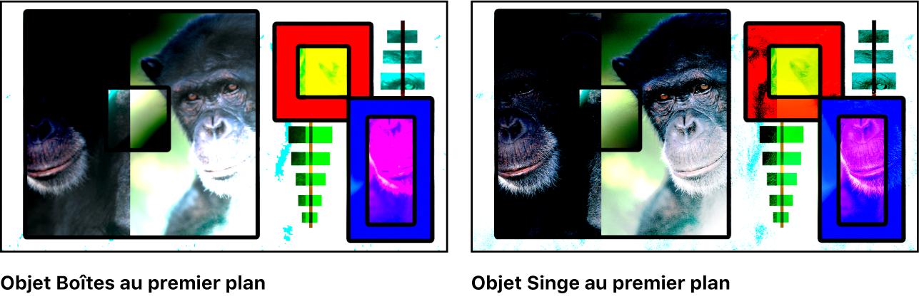 Canevas affichant les boîtes et le singe fusionnés à l'aide du mode Lumière vive