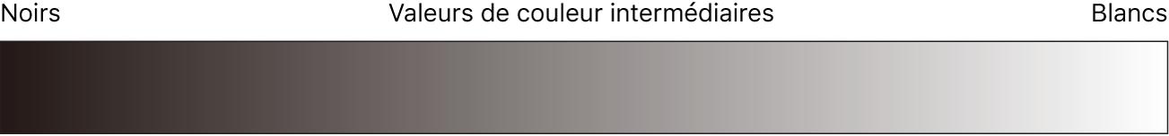 Diagramme affichant la plage de valeurs du noir au blanc