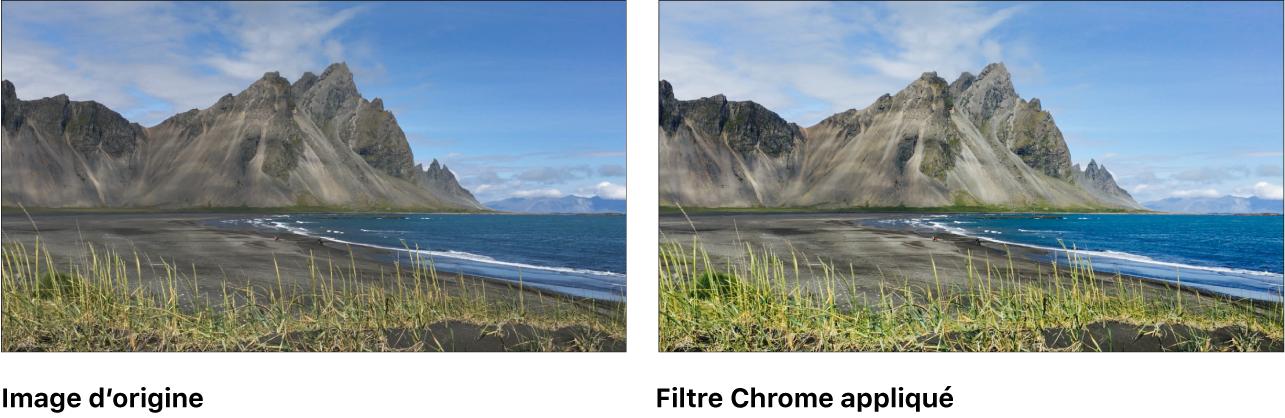 Canevas affichant l'effet du filtre Chrome