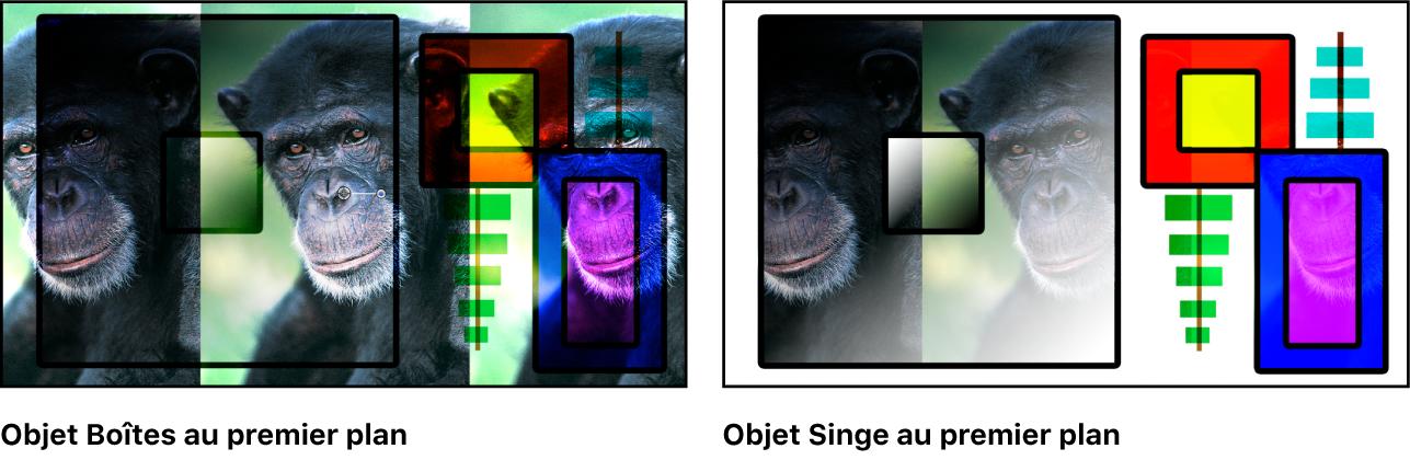Canevas affichant les boîtes et le singe fusionnés à l'aide du mode Superposition