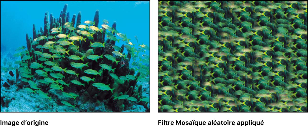 Canevas affichant l'effet du filtre Mosaïque aléatoire