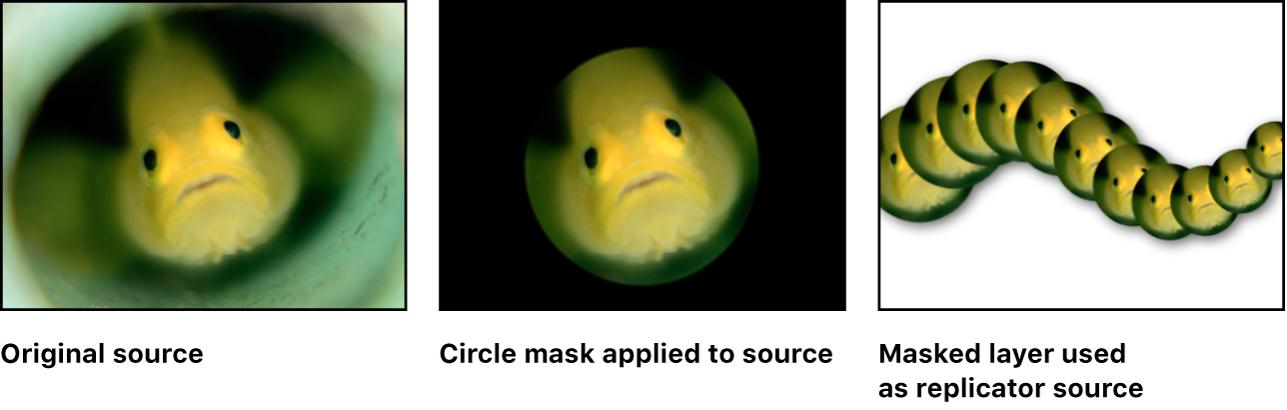 キャンバス。マスクがセルのソースレイヤーに適用されたリプリケータが表示されています