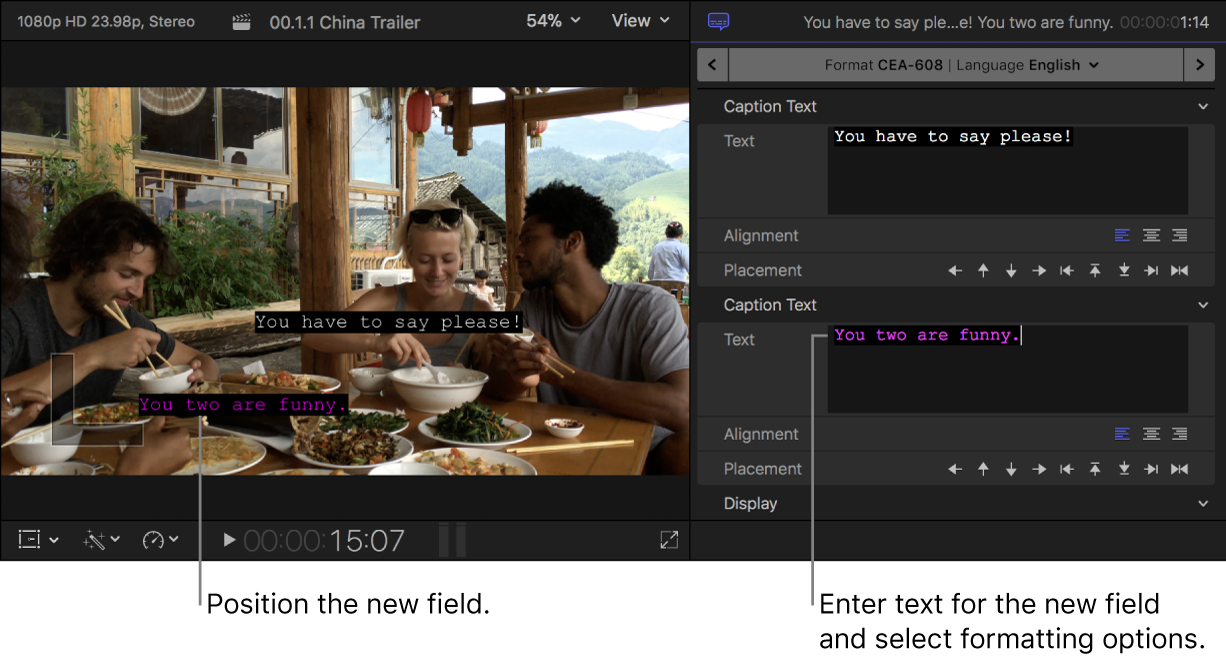 The viewer and the Caption inspector showing a caption with two text fields