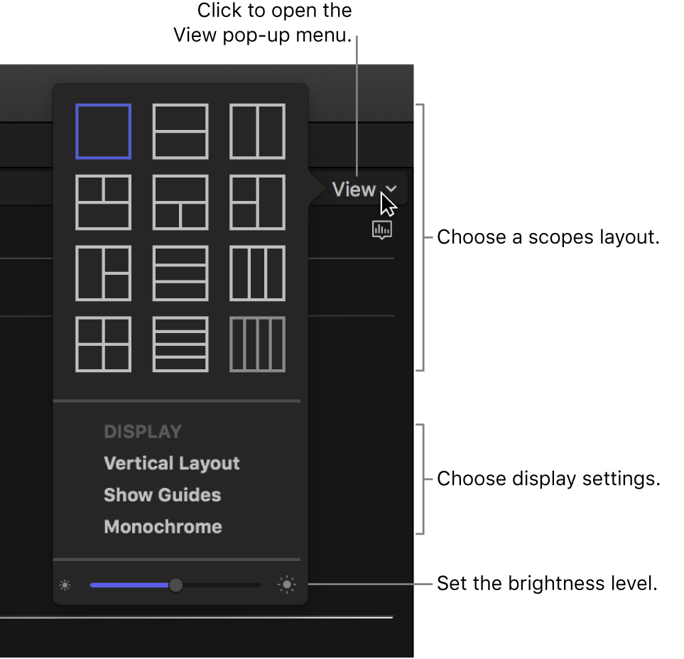 Options in the View pop-up menu above the video scopes display