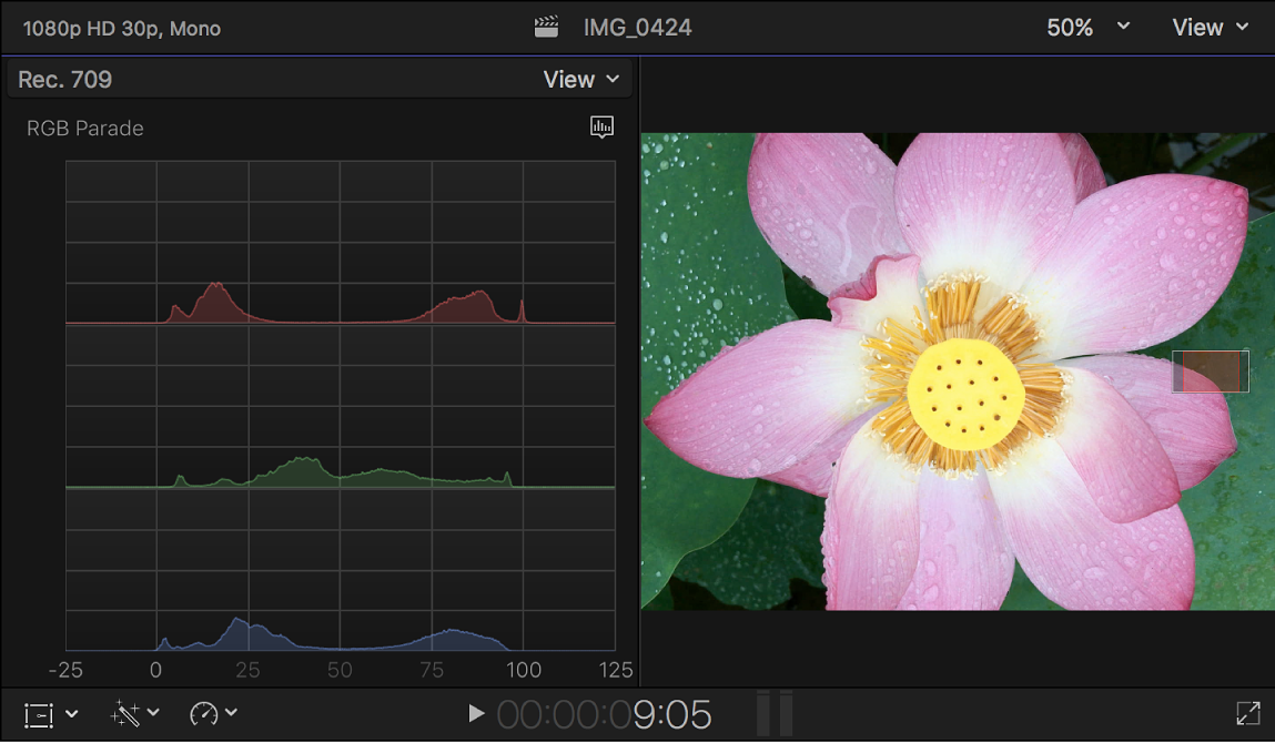 The RGB Parade histogram shown to the left of the viewer