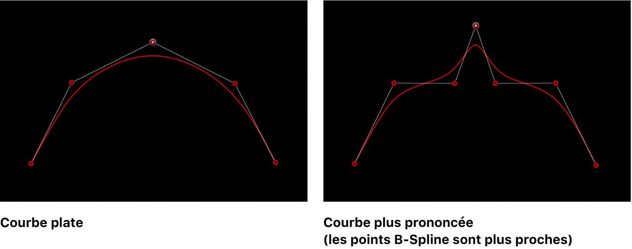Visualiseur affichant des courbes B-Spline plates et plus prononcées